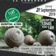 concours boule en bois 2019